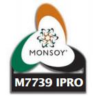 Soja M7739 Ipro