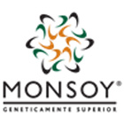 Soja Monsoy